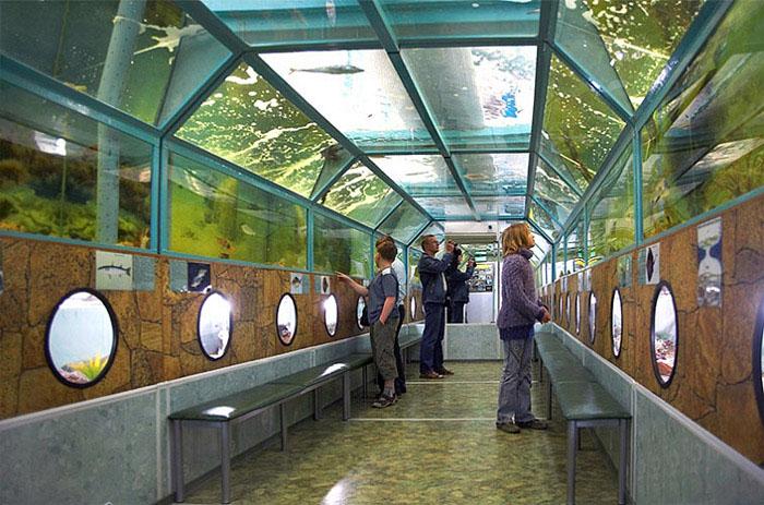 Анапа аквариум батискаф
