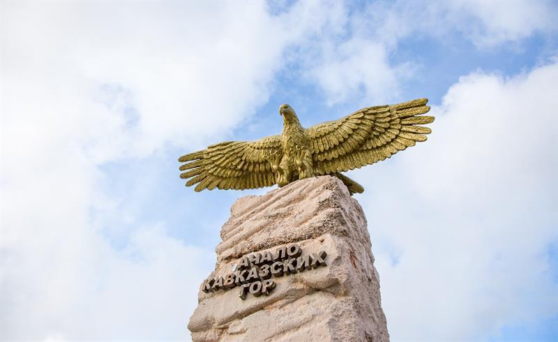 Орел в Анапе фото