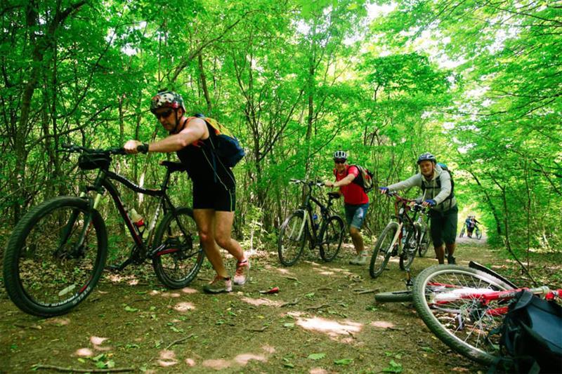 Анапа вело туры