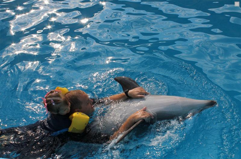 Витязево дельфинарий