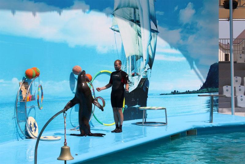 Витязево дельфинарий Немо