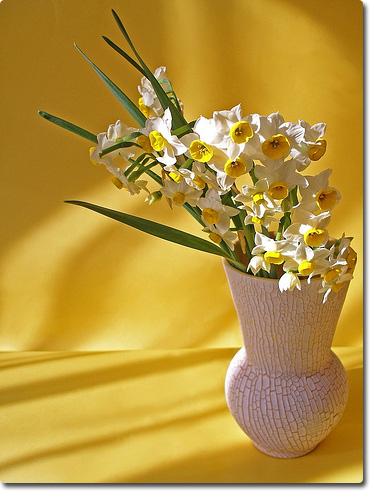 Анапа праздник Весны